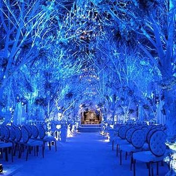 Photo of blue ferns winter wonderland theme with seating