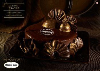 dark truffle chocolate ice cream cake with ganache with frills