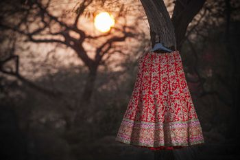 Photo of Red Embroidered Bridal Lehenga on Hanger