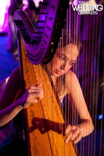Entertainment idea for wedding 0 harpist