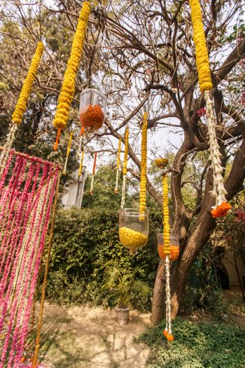 Genda phool strings hanging from tree
