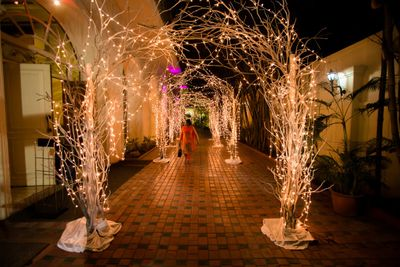 Photo of Entrance decor with fairy lights and twigs