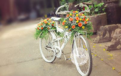 Photo of white bicycle