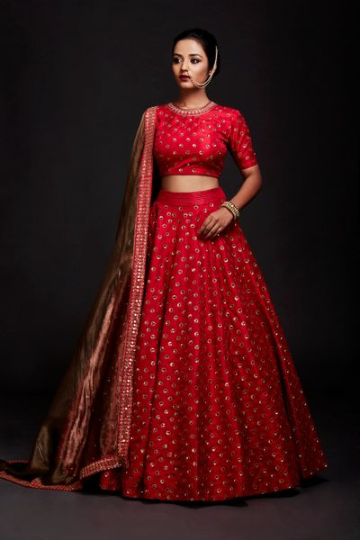 Red Bridal Lehenga Photo crop top lehenga