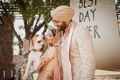 Photo of Bride and groom with pet dog