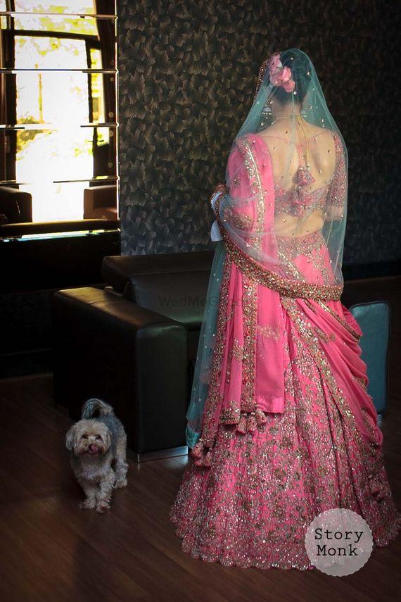 Photo of Candy pink bridal lehenga back shot
