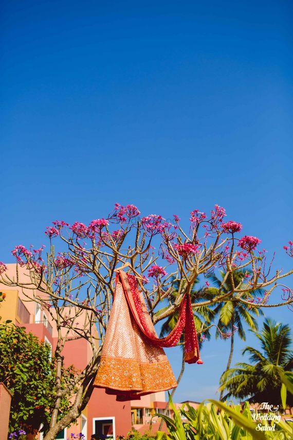 Photo of bridal lehenga on tree
