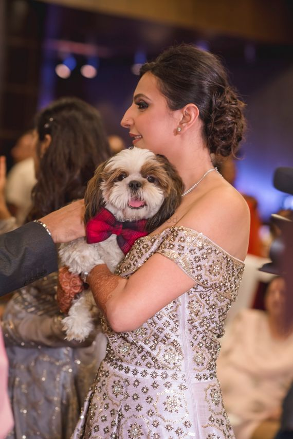 Photo of Bride with dog wearing bow tie