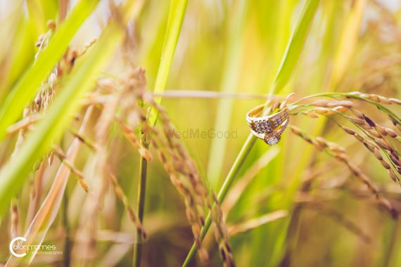 Photo of Engagement Rings on Crops