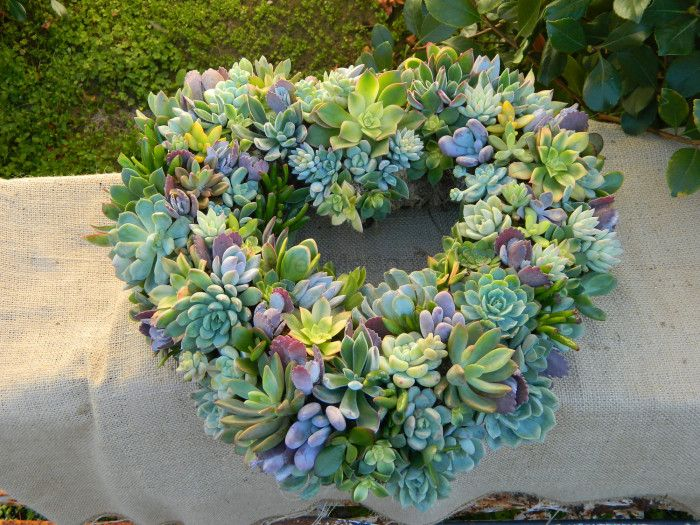 #Trending: Succulents At Weddings, Pretty and Modern!