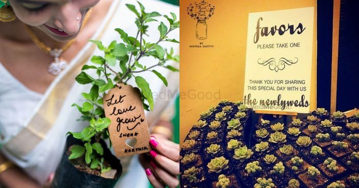 Go Eco-Friendly! Gift Potted Plants As Wedding Favors From These Top 7 Stores That We Found Out On WMG!