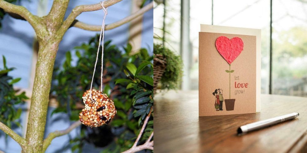 What To Put In Eco-Friendly Gift Hampers To Be Given On Your Wedding!